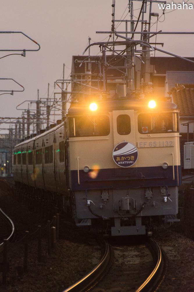 281125nisioka_akatsuki-1b.jpg