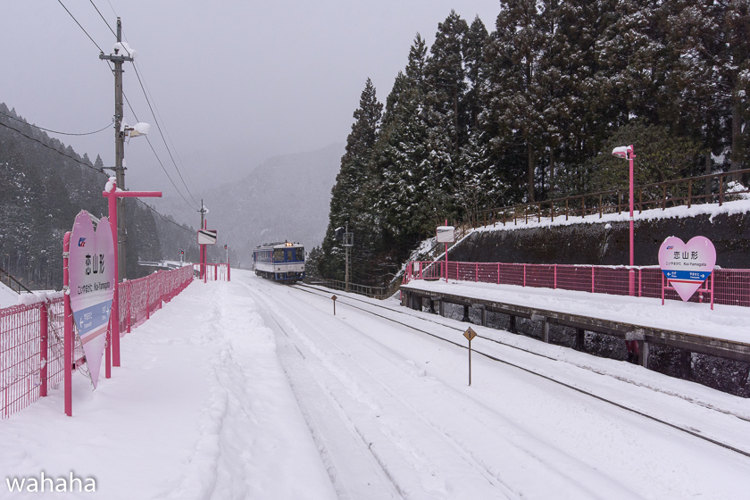 290104chizukyu-5.jpg