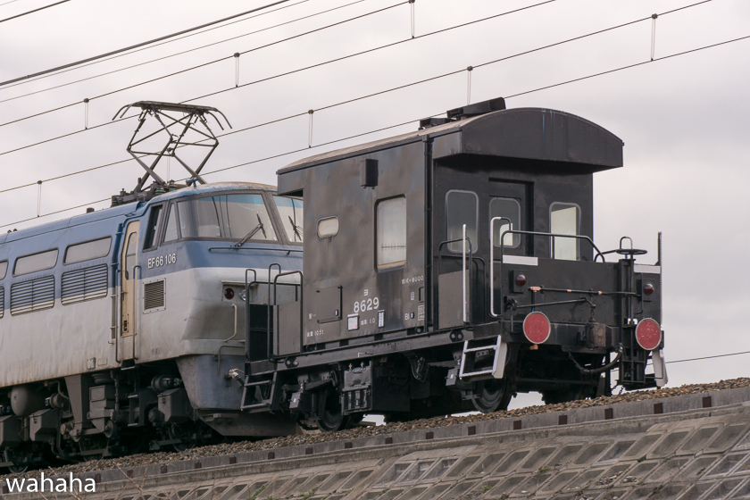 290117okubo_yo-2b.jpg