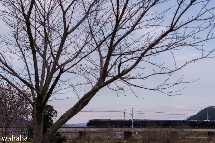290122mizukaze-5.jpg