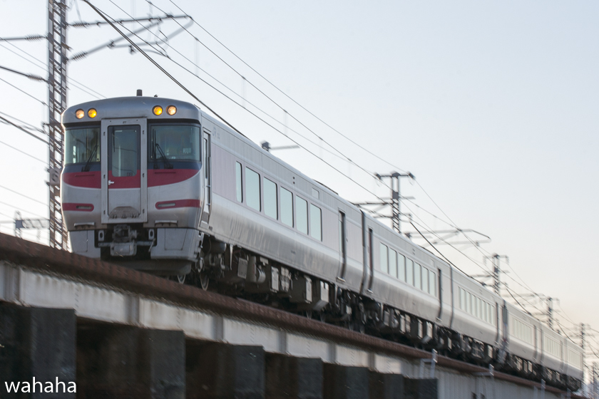290204ichikawa-11.jpg
