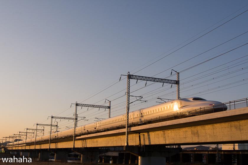 290204ichikawa-16.jpg