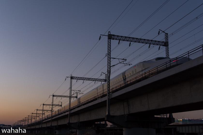290204ichikawa-20.jpg