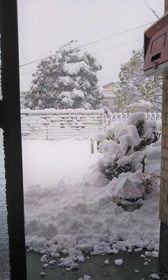 2011 1 23 玄関 雪