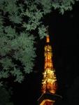 8.東京タワーの夜景-04D 04