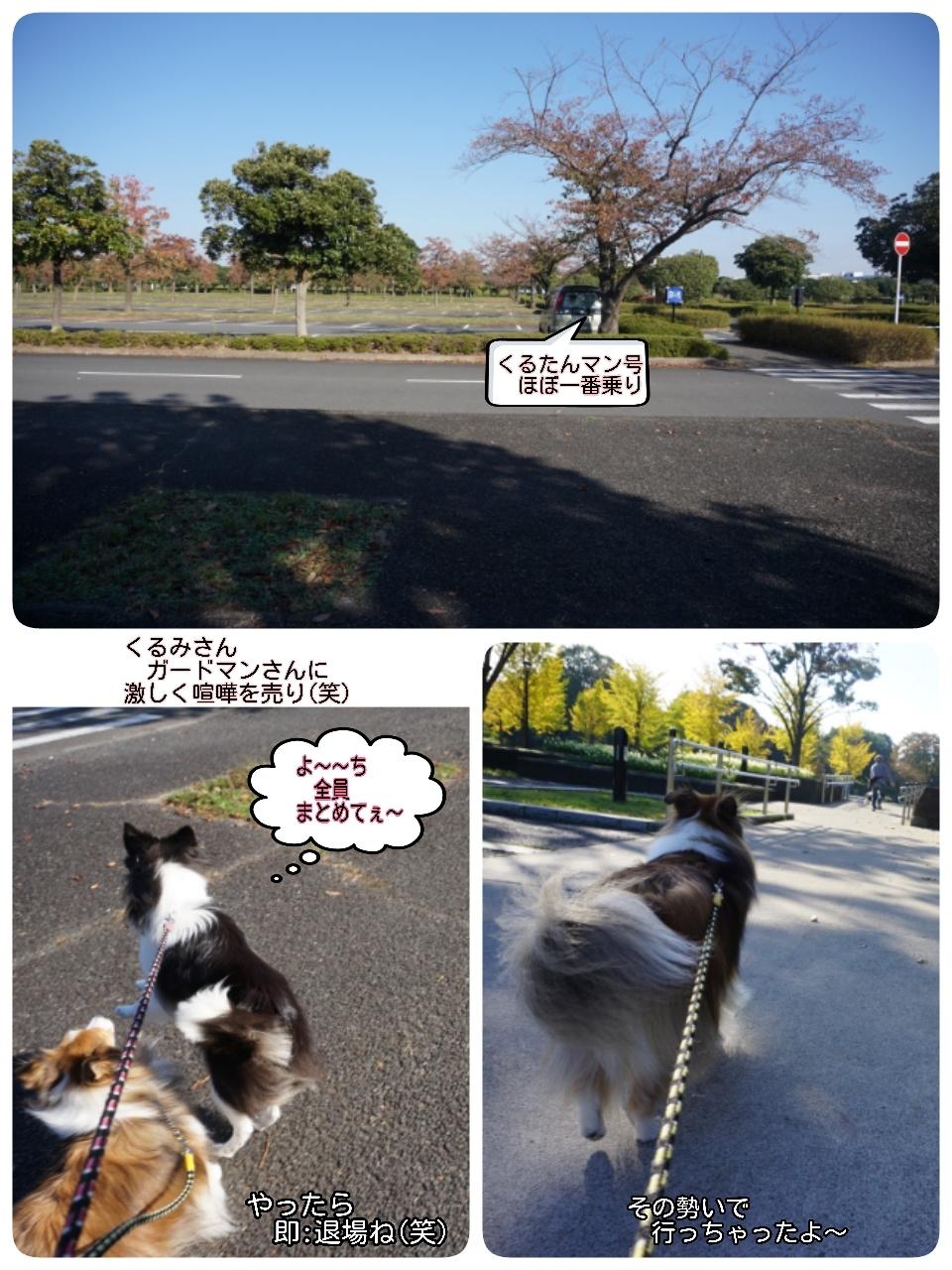 16-11-05-18-09-55-296_deco.jpg