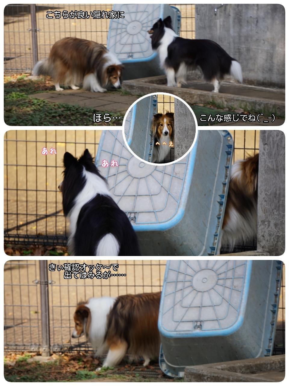 16-11-06-13-40-07-072_deco.jpg