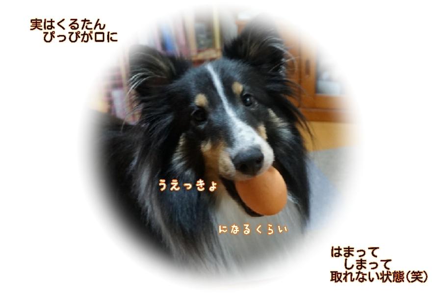 16-11-08-13-41-25-065_deco.jpg