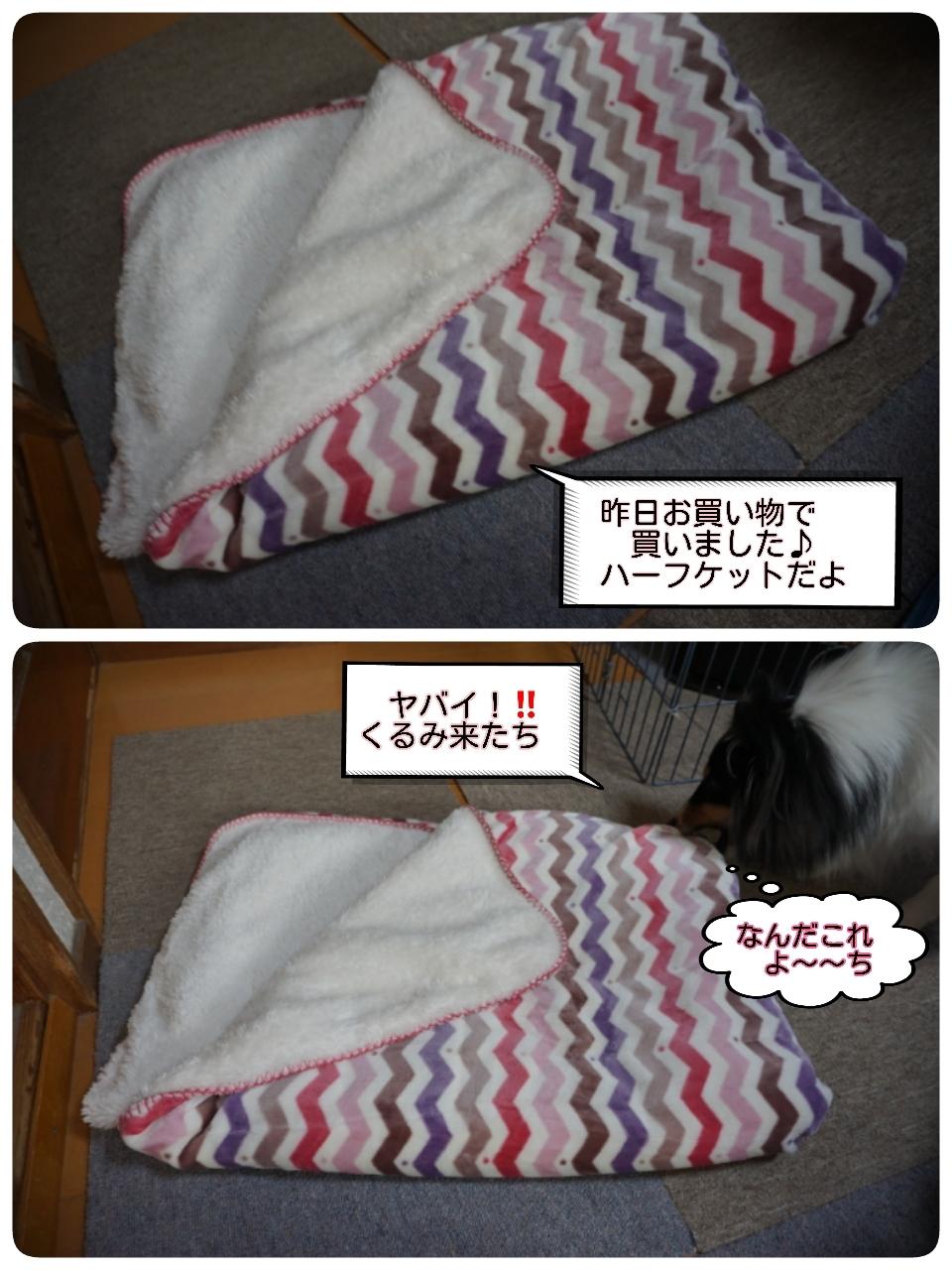 16-11-10-14-36-27-770_deco.jpg