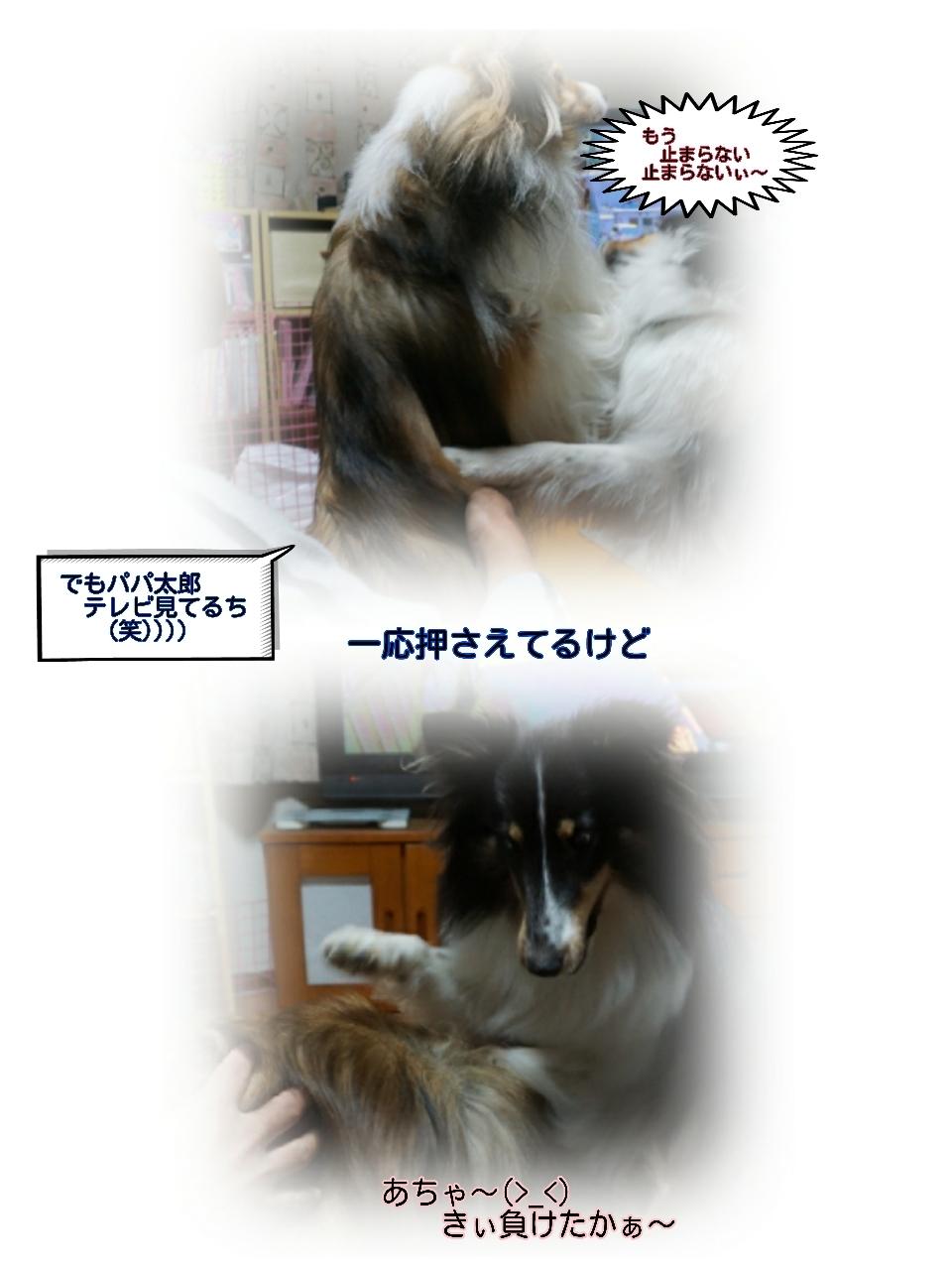 16-11-23-10-28-44-220_deco.jpg