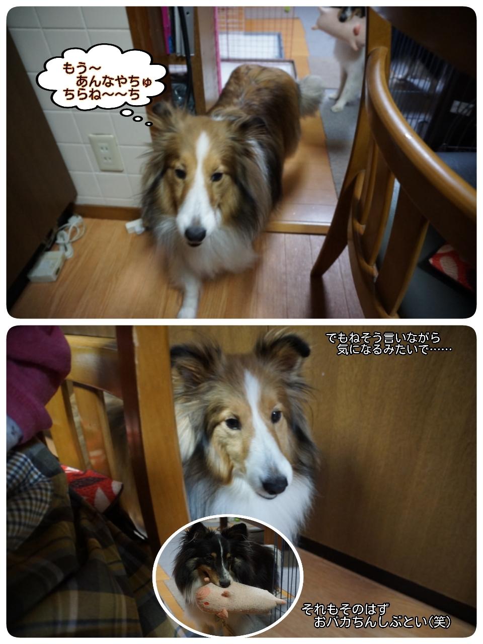 16-12-01-11-26-08-361_deco.jpg