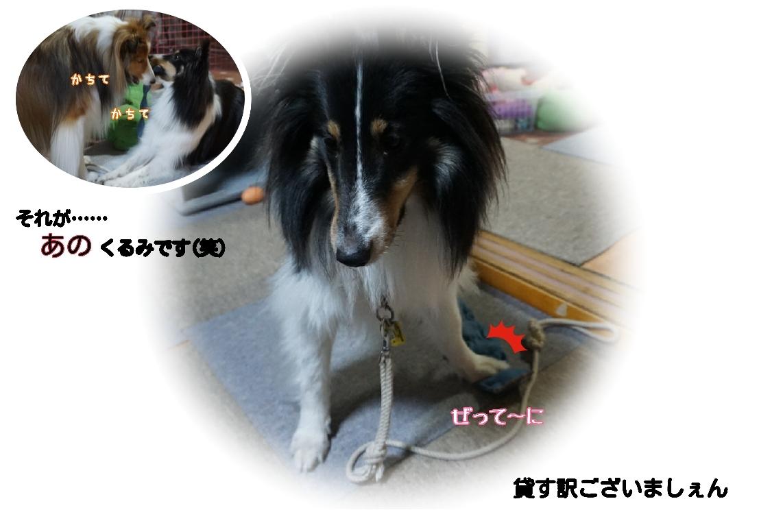 16-12-10-04-38-10-370_deco.jpg