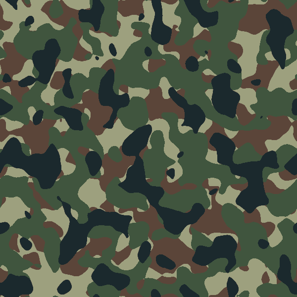 camo.png