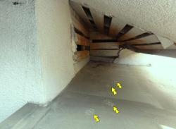 天井裏への通路-2