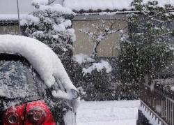 また雪が降り出した20170115昼過ぎ