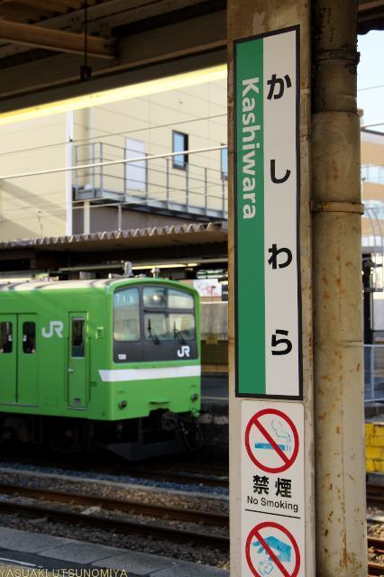 関西本線と201系