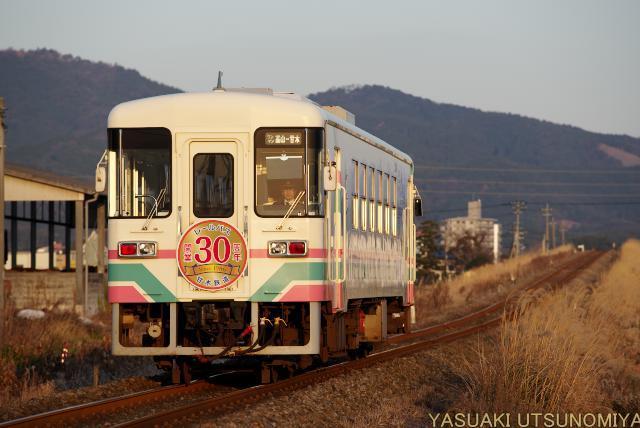 AR301
