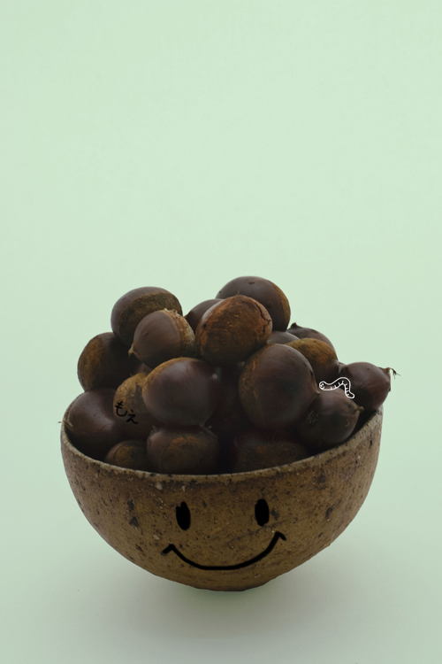 chestnut_16_9_25_A.jpg