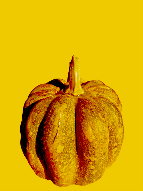 pumpkin16_12_18_2.jpg