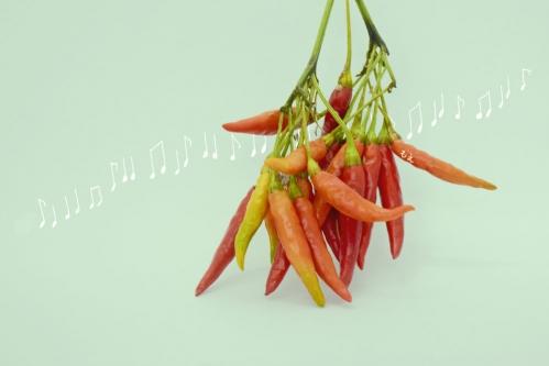 red_pepper_16_10_8_1_A_2.jpg