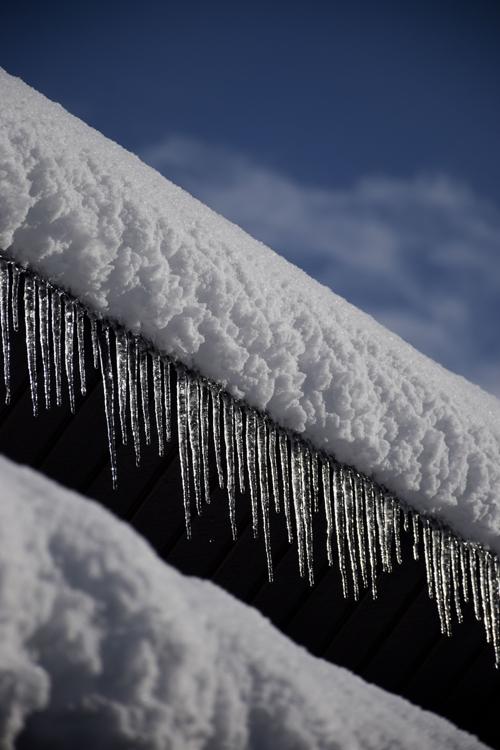 snow_17_1_24_5.jpg