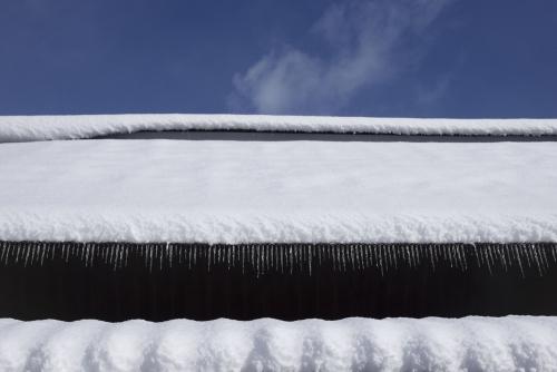 snow_17_1_24_6.jpg