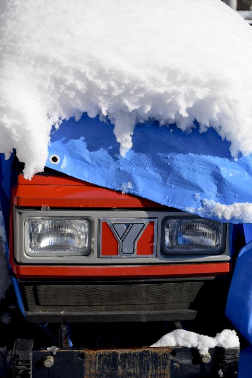 snow_17_1_24_8.jpg