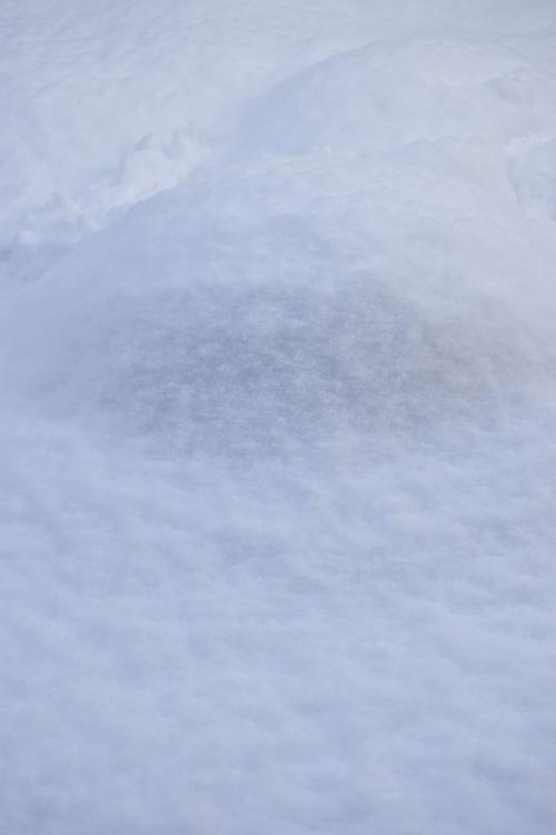 snow_17_1_24_9.jpg