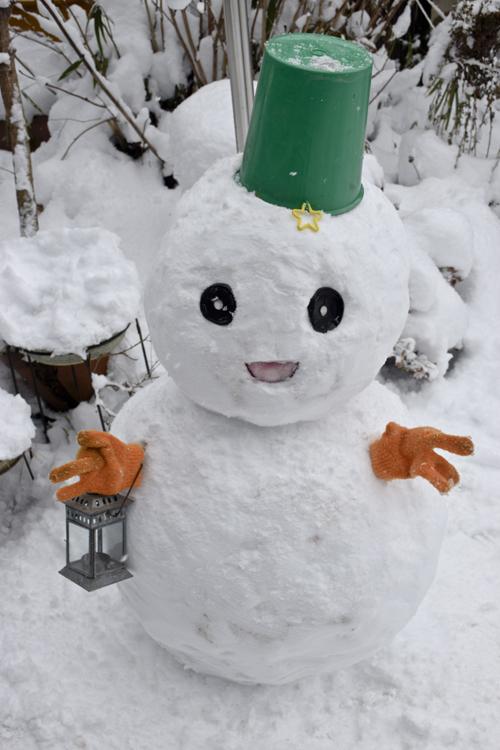 snowman_17_1_15_1.jpg