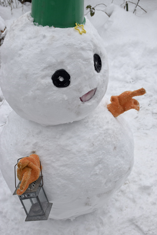 snowman_17_1_15_2.jpg