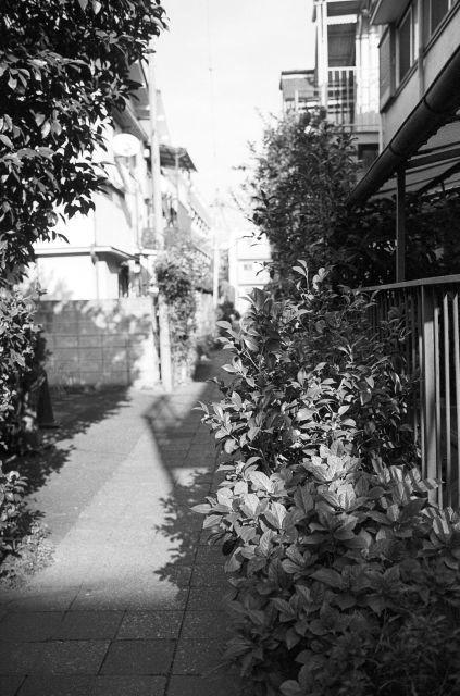 街の秋2016-05a