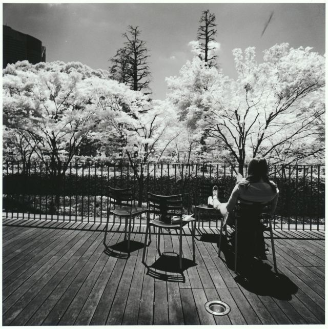 夏の予感 / An Early Summer Day - Silver Print