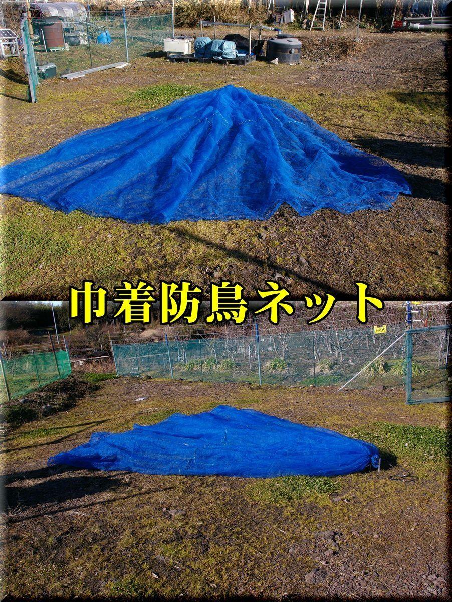 1kanryou170125_008.jpg