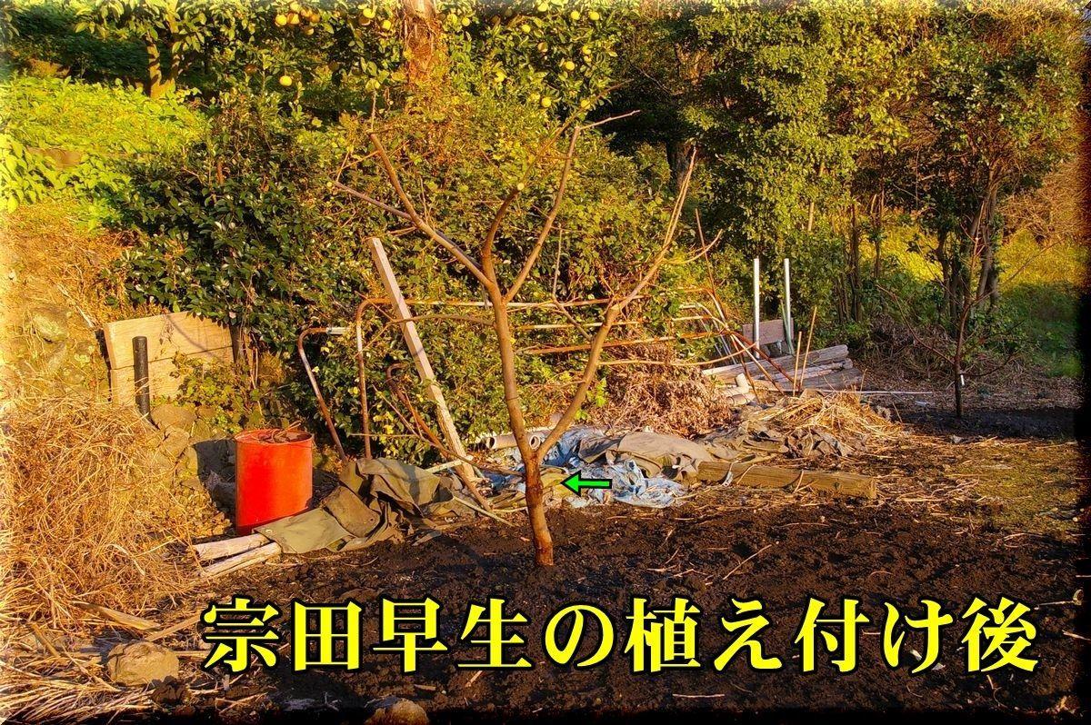1soudawase161203_011.jpg