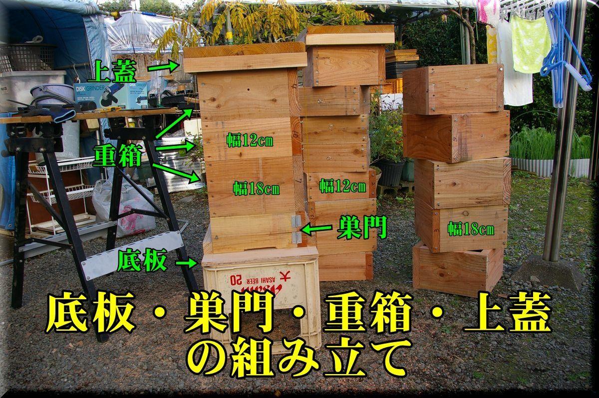 1subako161116_019.jpg