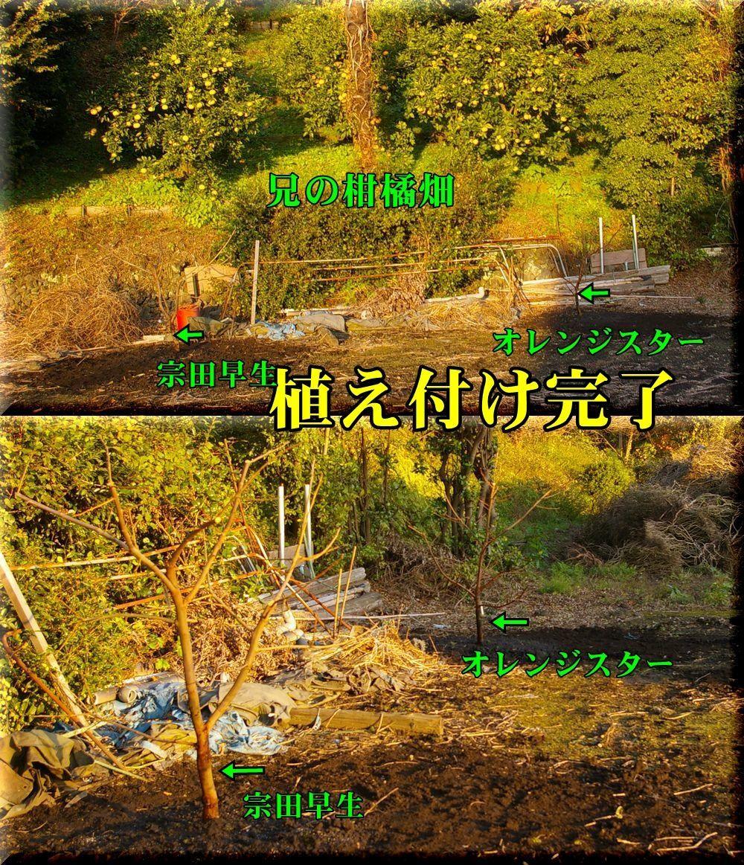 1uetuke161203_010.jpg