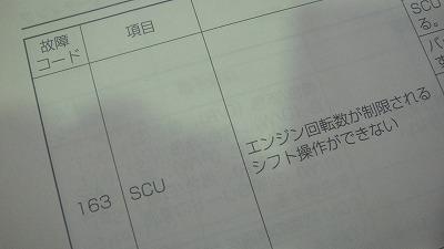 DSC07322.jpg