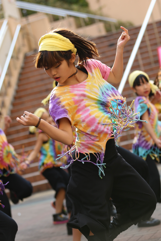 はまっこダンサーズ.jpg
