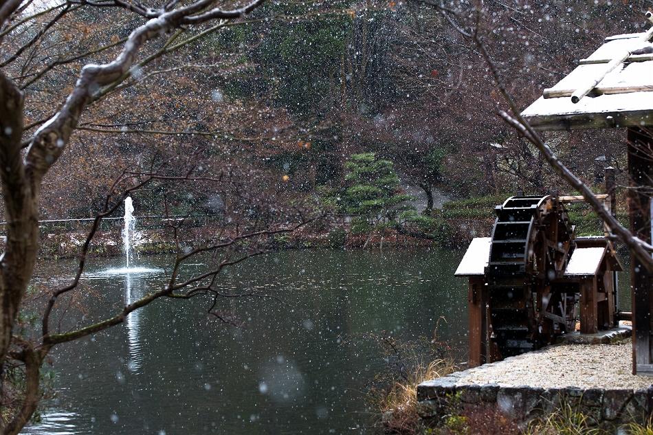 higashiyama_snow-9.jpg