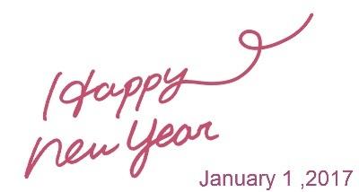 Happy New Year 2017年