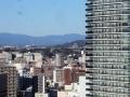 20170202_熊本城