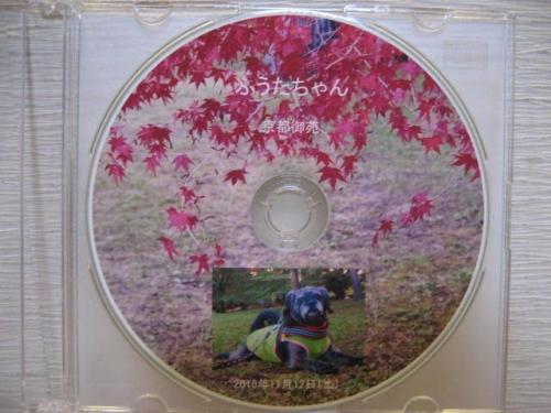161201ふうたCD・2016紅葉の御所編