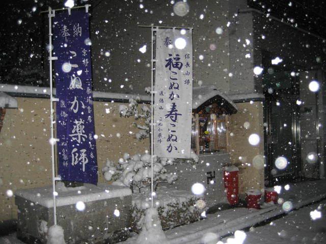 170115雪の朝さんぽ③