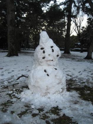 170115雪の日の御所さんぽ④