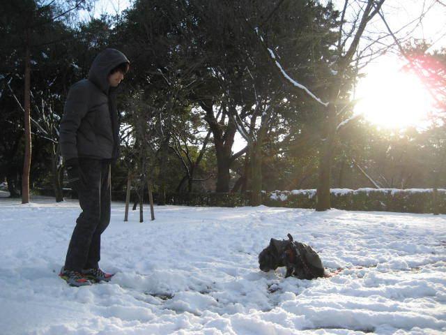 170115雪の日の御所さんぽ⑬