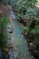 大瀬の泥堆積 熊野川水系
