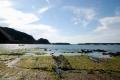 見草の浜 2017.01.27.