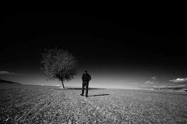 landscape-753072_640.jpg
