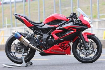 Ninja250SL   jp250 レース用 (1)