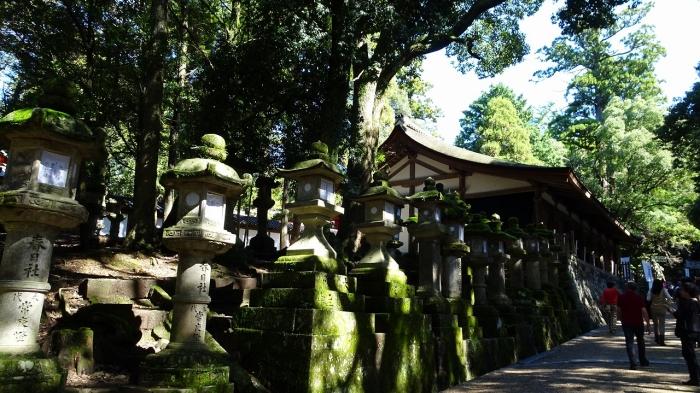 奈良観光 (2)